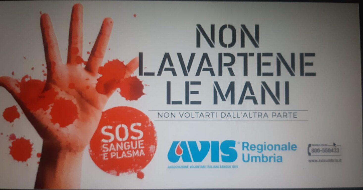 Il logo di 'Non lavartene le mani': al via la campagna promossa da Avis Regionale Umbria